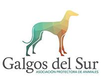 Asociación para la protección y adopción del galgo